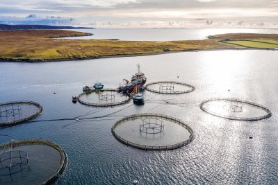£129k funding awarded to Aquaculture Clean Energy Project